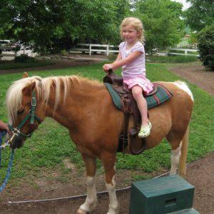 pony rides miami