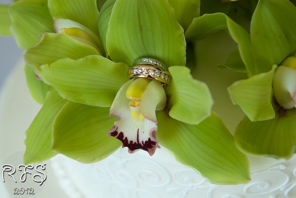 1 Miami Wedding Planner Miami Florida Wedding Miami