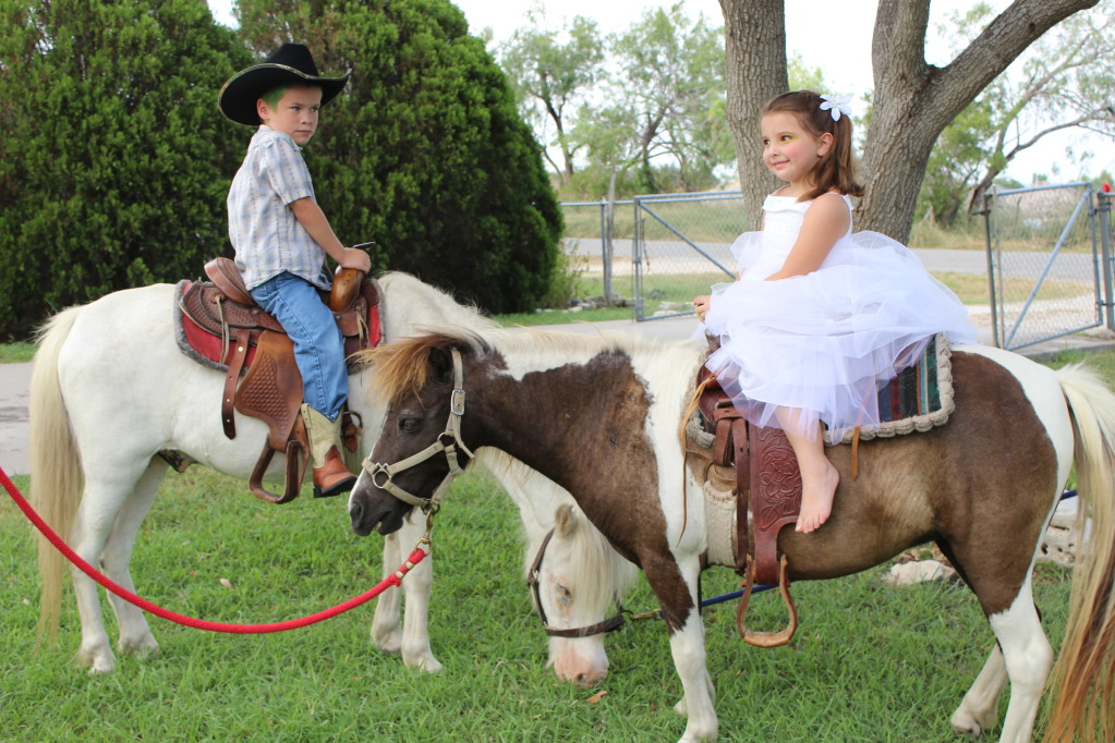 Pony Rides For Kid Party Birthday Pony Rides Miami A